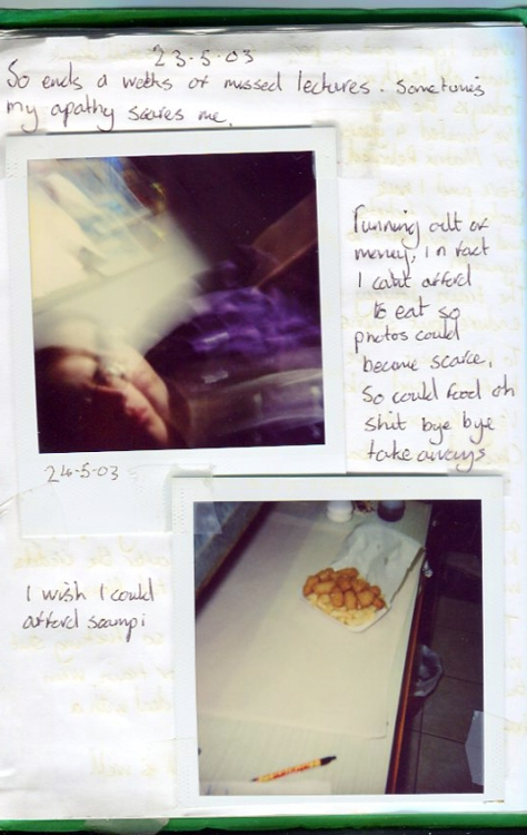 I wish I could afford scampi, Diary detail (2003)