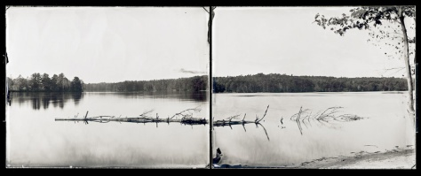 Tree in Water (diptych), Gulf Island Pond, Greene, A River Lost and Found: The Androscoggin in Time and Place (2011)