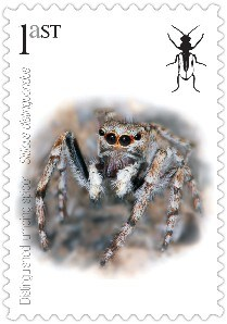 Buglife made their own alternative stamps showing species threatened by the Royal Mail development